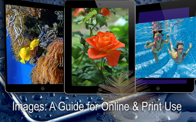 Images: some differences between online and print use